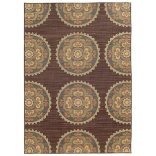 Tommy Bahama Cabana Brown Indoor/Outdoor Area Rug