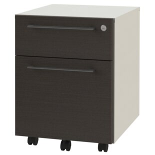 OfisLite 2-Drawer Mobile Vertical Filing Cabinet