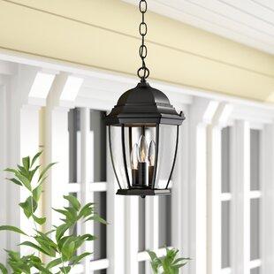 Astoria Grand Drumkeeran 3-Light Outdoor Hanging Lantern