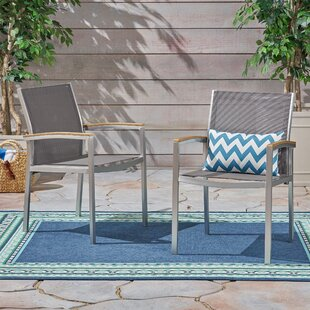 Claypool Patio Dining Chairs (Set of 2) by Union Rustic