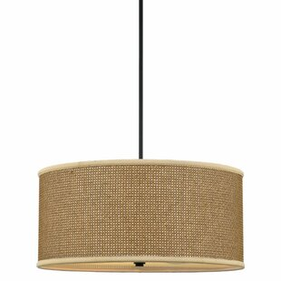 Beachcrest Home Crane 4-Light UpLight Dru..