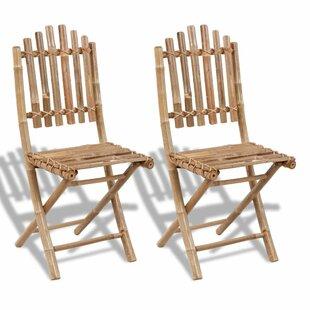 Fargo Folding Garden Chair (Set Of 2) By Bay Isle Home