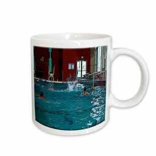 Water Polo Wayfair