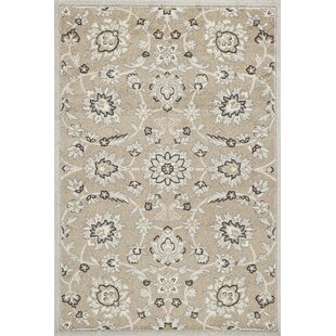 Hershel Beige/Gray Indoor/Outdoor Area Rug