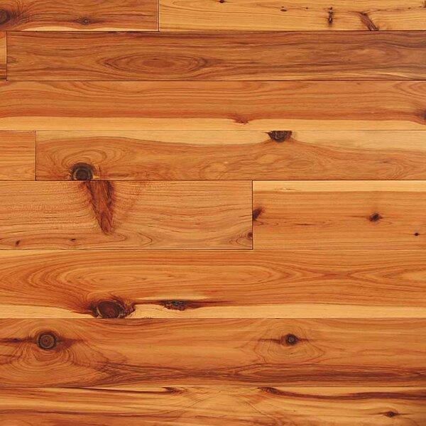 Easoon Usa 3 14 Solid Cypress Hardwood Flooring In Natural Wayfair