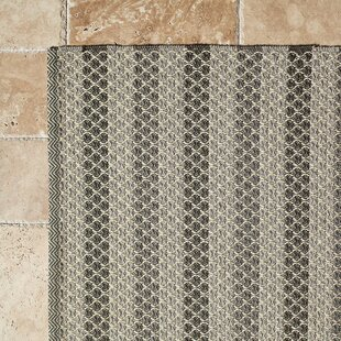 Hayes Hand-Woven Gray Indoor/Outdoor Area Rug