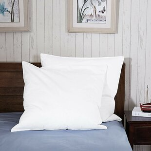 Pillow (Set Of 2) By Symple Stuff