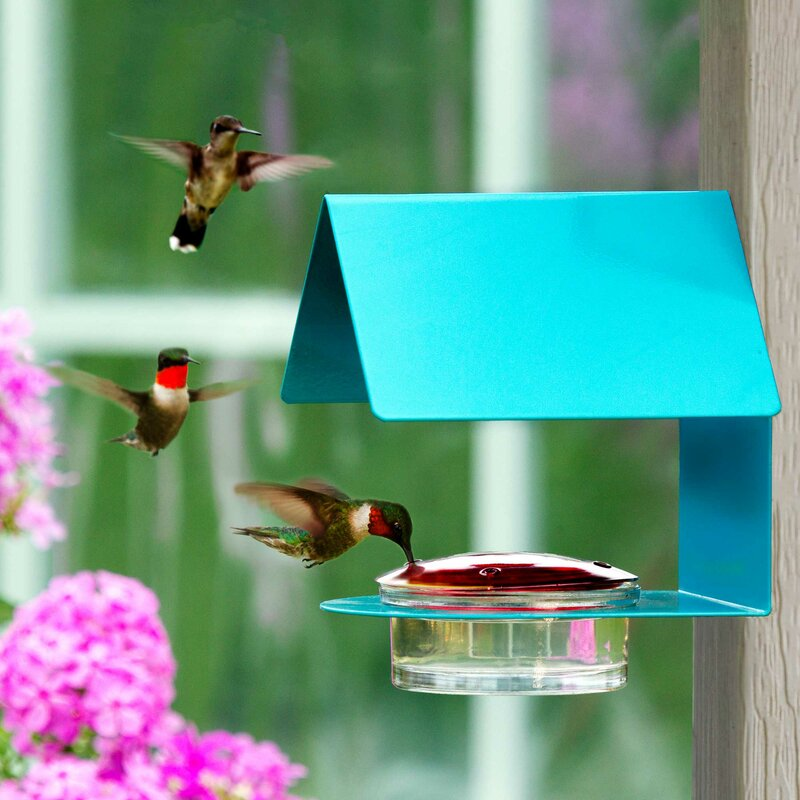 Hummingbird Feeders Blue Clear Mini Outdoor Sturdy Plastic Decor Suction Cup New