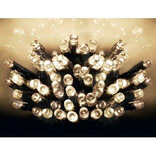 100 Light LED Fairy Light By The Seasonal Aisle