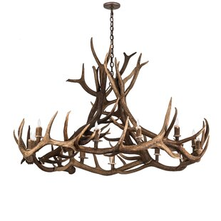 Loon Peak Scruggs Elk 12-Light Novelty Chandelier