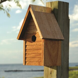 Heartwood Starter Home 12 in x 7 in x 6 in Birdhouse