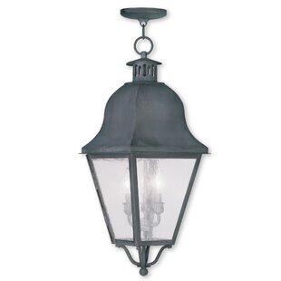 Alcott Hill Goodhue 3-Light Lantern Pendant