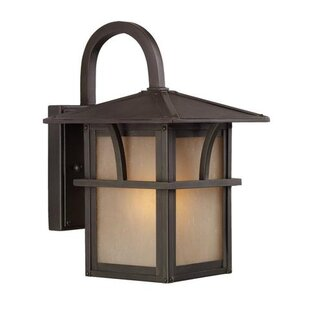 Buy luxury 1-Light Outdoor Wall Lantern By Efficient Lighting