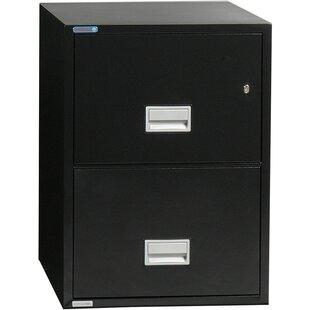 Phoenix Safe International 2-Drawer Vertical Filing Cabinet