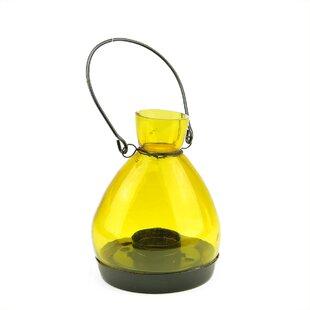 Glass Lantern by Northligh..
