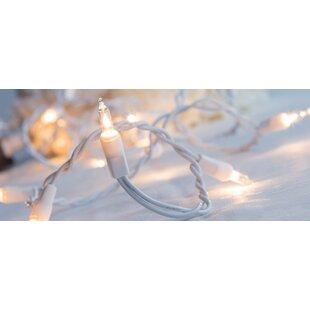 Clara 50-Light Mini String Light by The Holiday Aisle