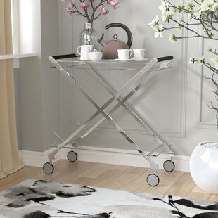 Hurley Modern Design Steel Glass Bar Cart by Everly Quinn