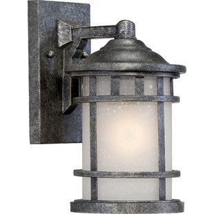Hartnell Traditional 1-Light Outdoor Wall Lantern by Breakwater Bay