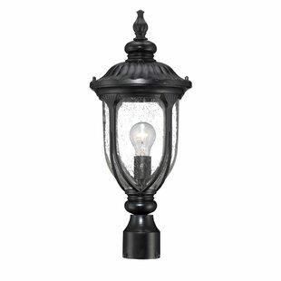 Angie Outdoor 1-Light Lantern Head by Fleur De Lis Living