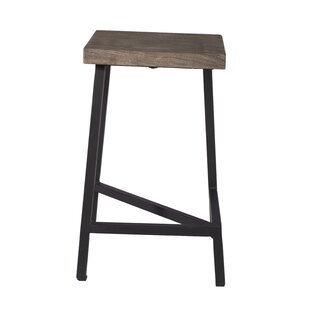 Speedwell Counter Height 24 Bar Stool (Set of 2) by Union Rustic