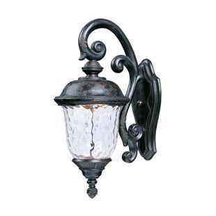 Astoria Grand Islington 1-Light Outdoor Wall Lantern
