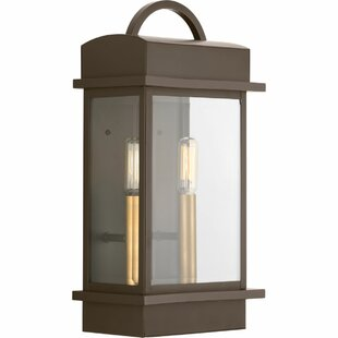 Datura 2-Light Outdoor Wall Lantern By Bloomsbury Market Outdoor Lighting
