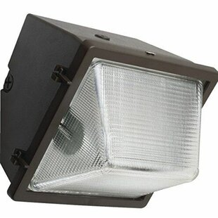 Buying Halide 1-Light Floodlight By Newhouse Lighting