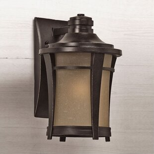 Loon Peak Pinehurst 1-Light Outdoor Wall Lantern