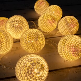 Tayla LED Fairy Light Globe Balls 10 Light Novelty String Lights