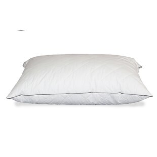 Eamon Quilted Down Alternative Queen Pillow