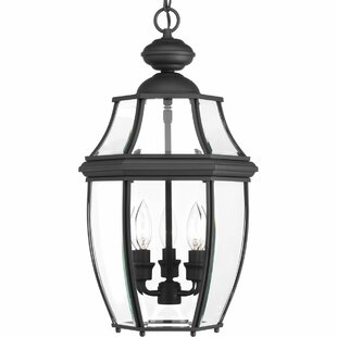 Alcott Hill Dunmore 3-Light Outdoor Hanging Lantern