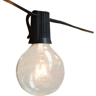 28 ft. 25-Light Globe String Light by The Paper Lantern Store