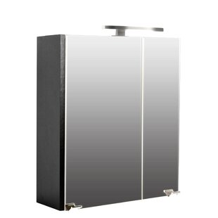 Wingil 60 X 62cm Surface Mount Mirror Cabinet By Wade Logan