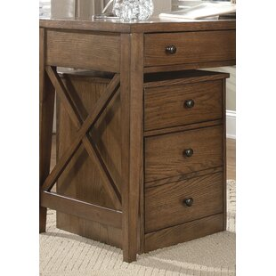 Warkentin 2-Drawer Mobile File Cabinet