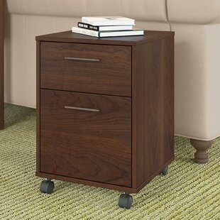 Oridatown 2-Drawer Mobile Vertical Filing Cabinet by Beachcrest Home