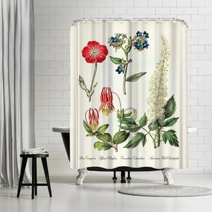 Adams Ale Rose Campion Single Shower Curtain