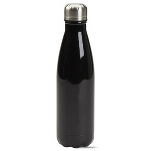Enjoy Today Double Wall 16 oz. Stainless Steel Water Bottle