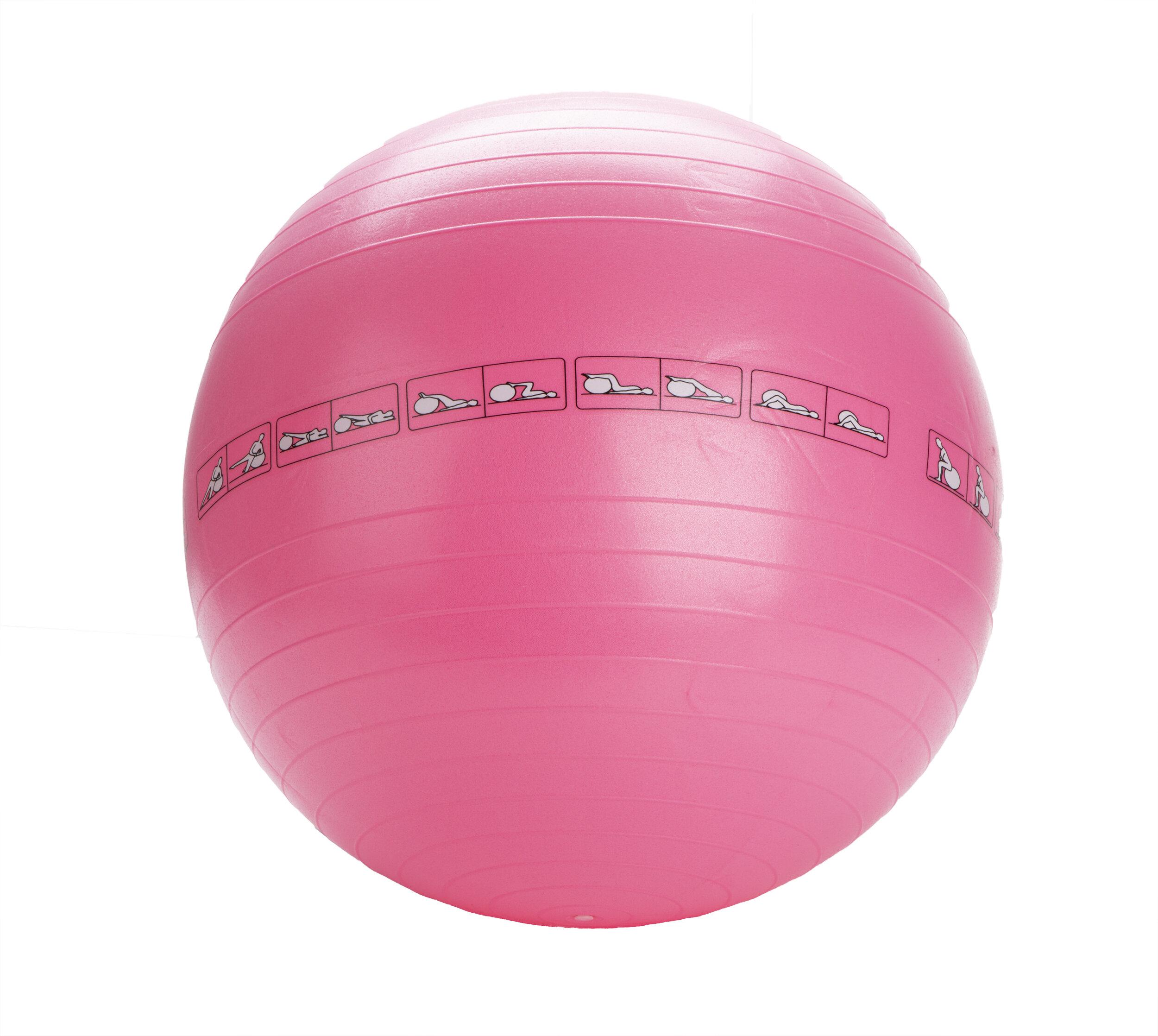 Mind Reader Exercise Yoga Ball Wayfair