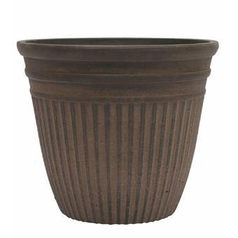 Ophelia Co Malena Ceramic Pot Planter Wayfair