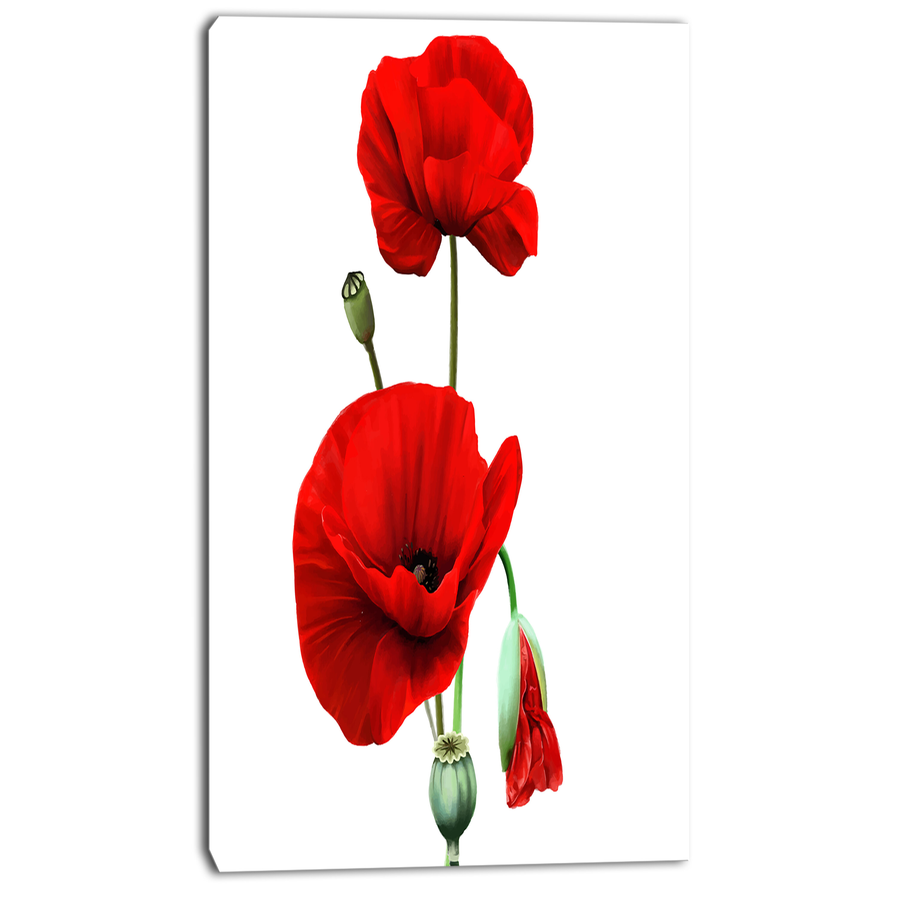 Designart Red Poppies On White Background Painting Print On
