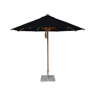Yadira 3m Traditional Parasol By Freeport Park