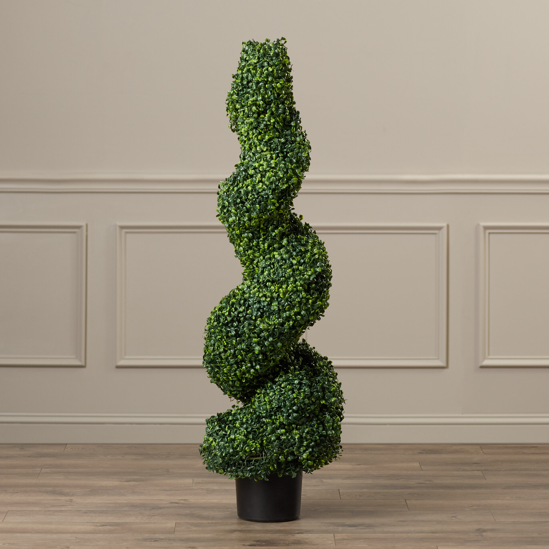 Darby Home Co Boxwood Topiary In Pot Reviews Wayfair