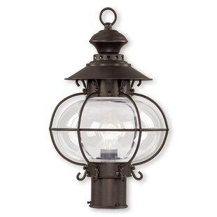 Longshore Tides Shielo Outdoor 1-Light Lantern Head