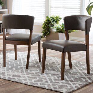 Slowik Side Chair (Set of 2) Brayden Studio