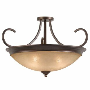 Edgewater 4-Light Semi Flush Mount by Darby Home Co