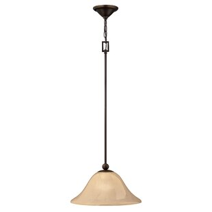 Hinkley Lighting Bolla 1-Light Cone Pendant