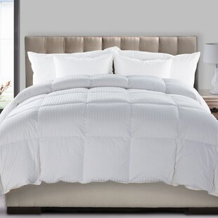 Hyper Feather Blend Midweight Down Comforter