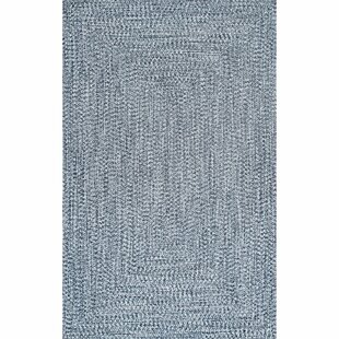Moseley Hand-Braided Medium Blue/Off-white Indoor/Outdoor Area Rug