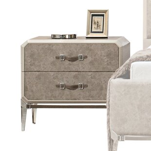 Ozan 2 Drawer Nightstand by Everly Quinn