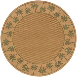 Vanessa Brown/Green Indoor/Outdoor Area Rug